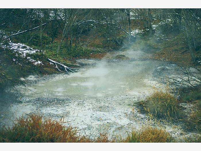 阿寒湖畔の森の中から覗く『ボッケ』。100℃近い泥が火山ガスとともにポコポコと噴き出している。