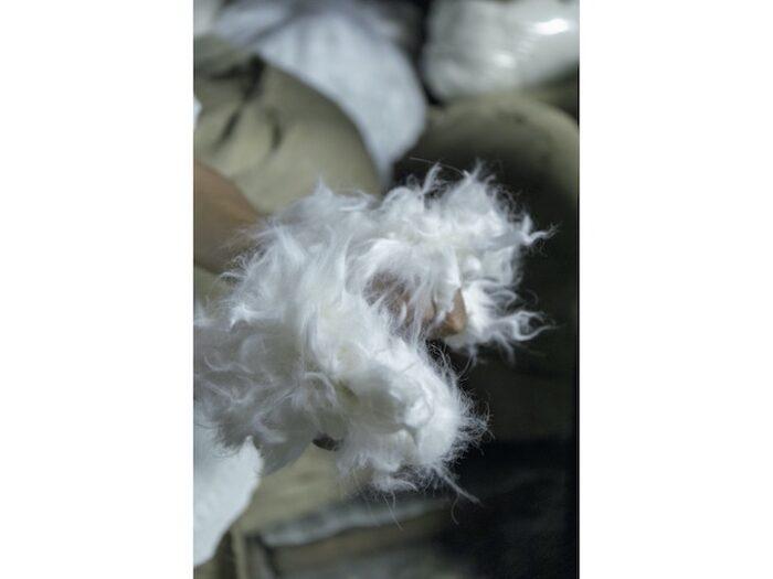 小金毛織では9 種類の原毛を 取り扱う。手元はアンゴラの原毛。