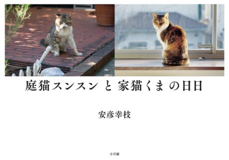 写真家、安彦幸枝さんが『庭猫スンスンと家猫くまの日日(ひび)』を刊行。