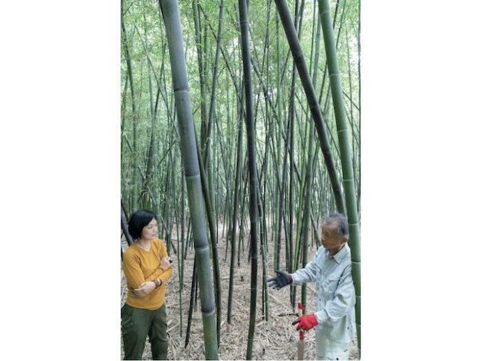竹林の管理をする生産者の清水勝さんに話を聞く伊藤さん (左)。