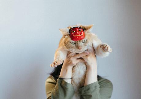 ふきげんな猫、ぶんぶん日記。 vol.2 節分って。
