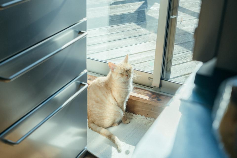 外の風にあたりたいから窓開けてくれない?