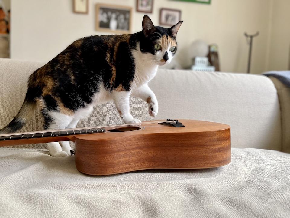 あたしの連載がはじまるってほんと? エイプリルフールは昨日よ。ま、一応、自己紹介するわ。ギター弾きの富士子です。これから1か月、あたしのさすらい姿、見てね。
