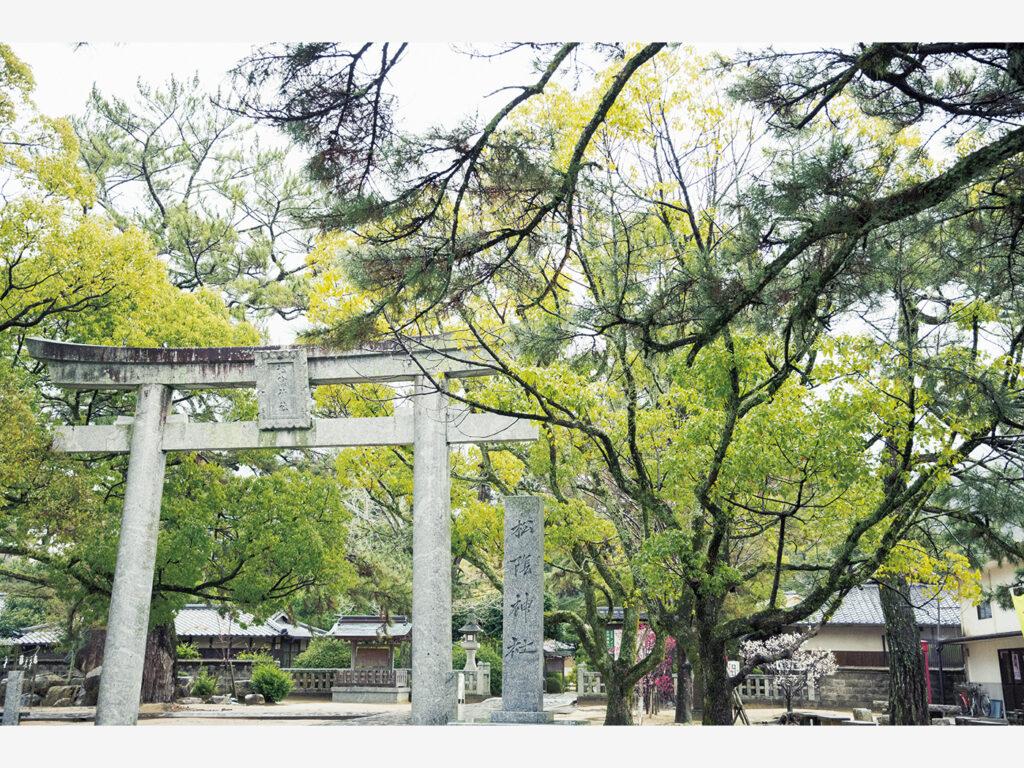 『松陰神社』は松陰の実家である杉家の邸内に、兄が祠を建てて愛用の硯と書簡を祀ったのが始まり。明治40(1907)年、門人の伊藤博文らの尽力で公の神社となった。