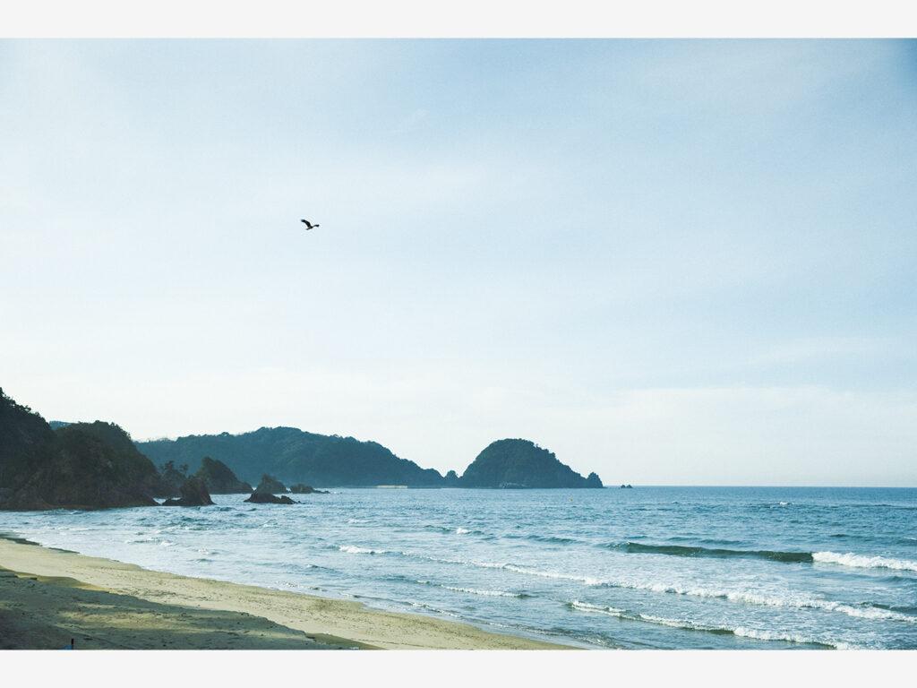 日本海を眺めながらの食事が贅沢。