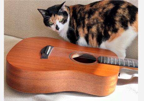 ギター弾きの富士子日記 。vol.17 あたしの十八番。