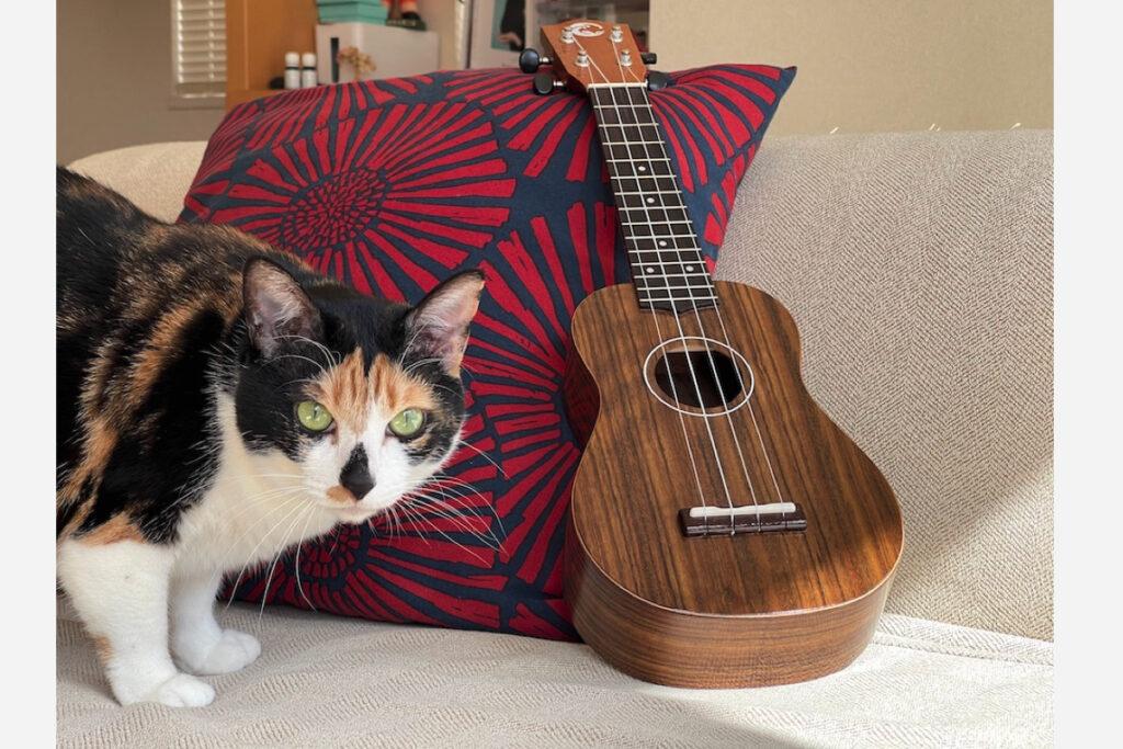 あたしの新しいギターじゃないの? ウクレレ、っていうの? 練習しなくっちゃ。