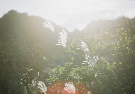 今月の写真家、今日の一枚。木本 日菜乃 vol.10