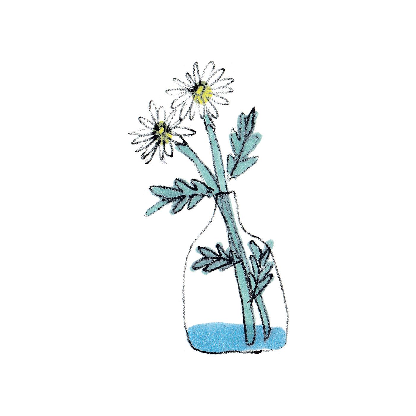 茎がどっぷりと浸かると苦しそうだから、花瓶の水を少なめに。
