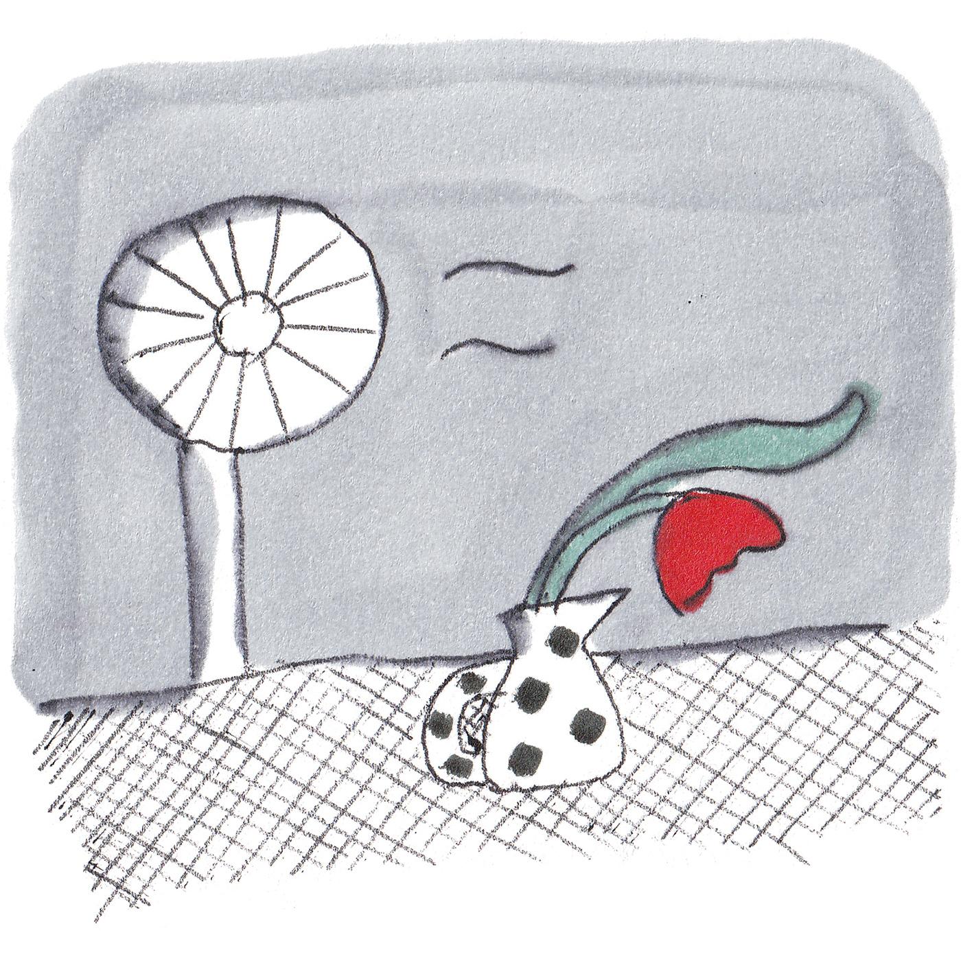 風通しよく、エアコンや扇風機の風も直接花へ。