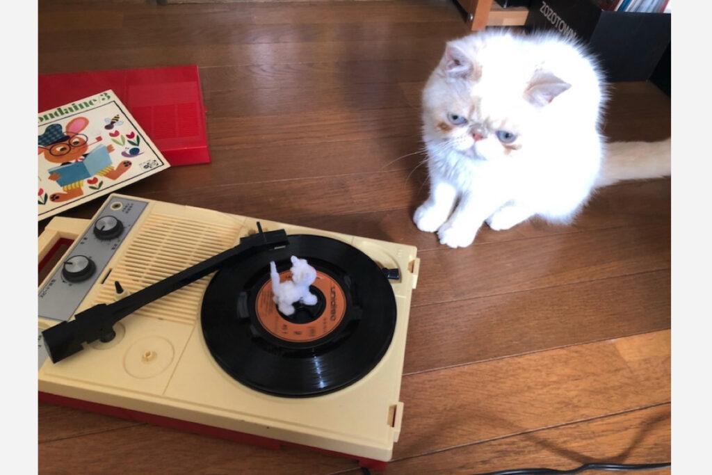 テンちゃんは音楽を聴くと、発光するときもあるんです。