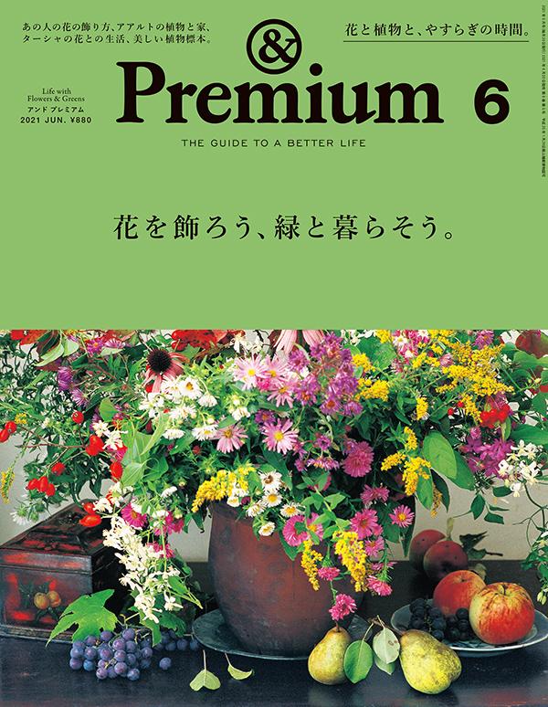 premium-90-h1