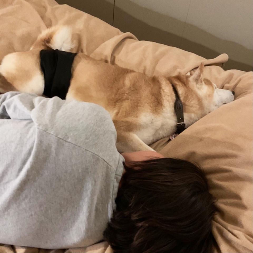 添い寝してあげました。モク