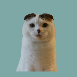 inaho-profile