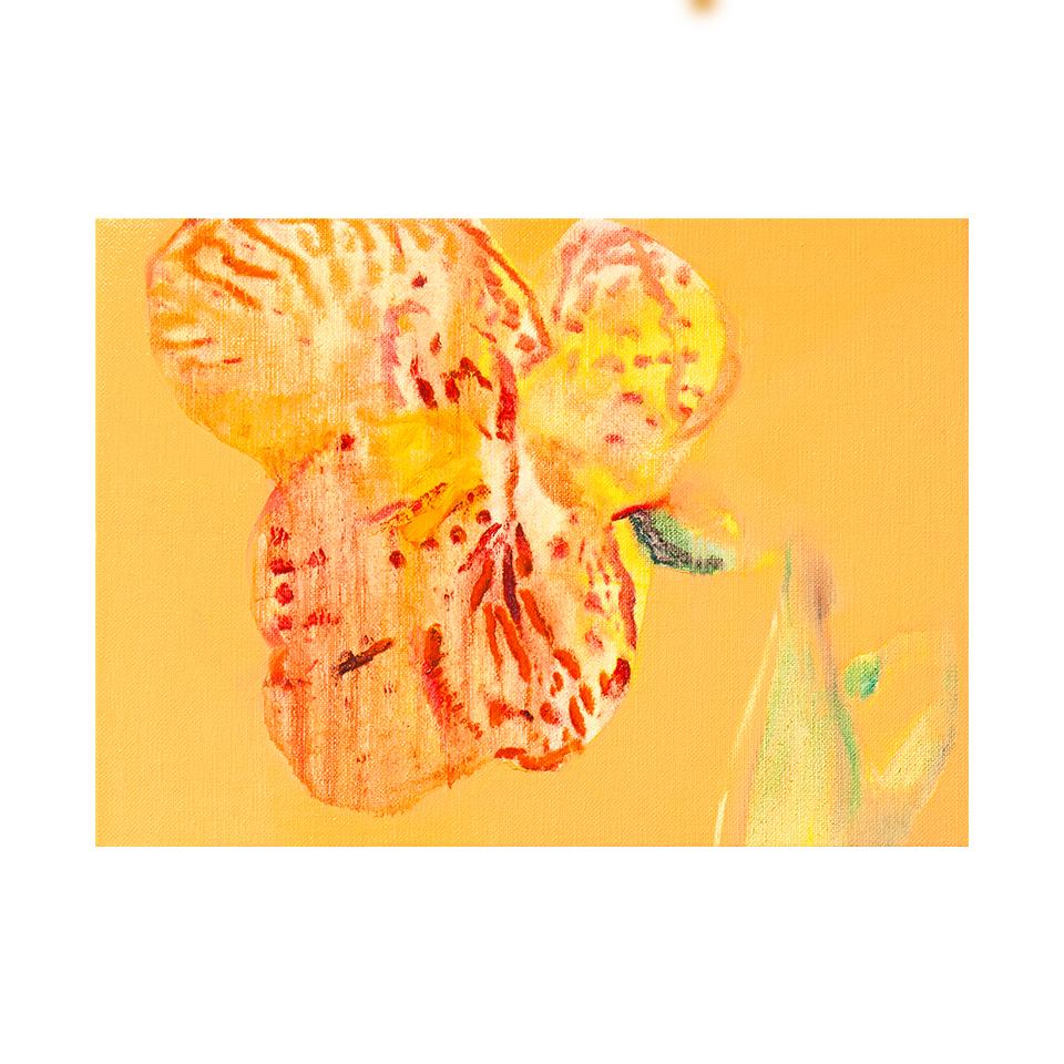 「檜扇」キャンバス、油彩/撮影:村上賀子
