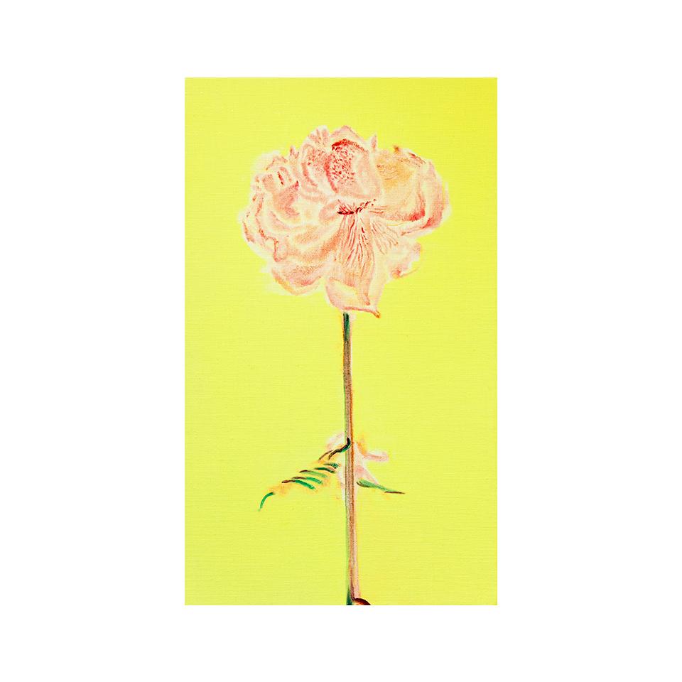 「芍薬」キャンバス、油彩/撮影:村上賀子