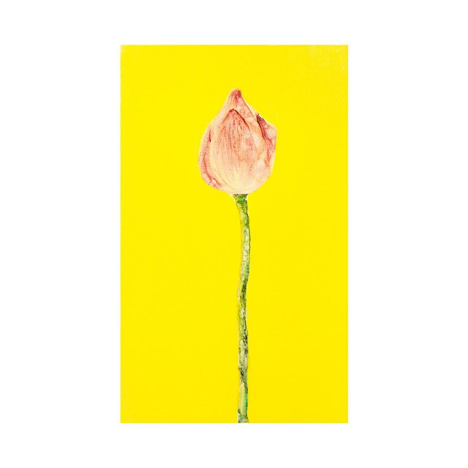 「蓮」 キャンバス、油彩/撮影:村上賀子