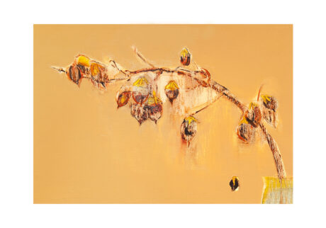 「桐の実」キャンバス、油彩/撮影:村上賀子