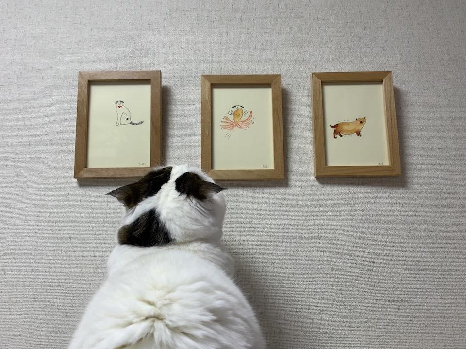 オレのこと、かっこよく描いてくれてるやん(一番左の絵)。飼い主のお気に入りは、右のヤブイヌの絵やねんて。オレのんちゃうんかい! わたなべとしふみさん、会ってみたいなー。