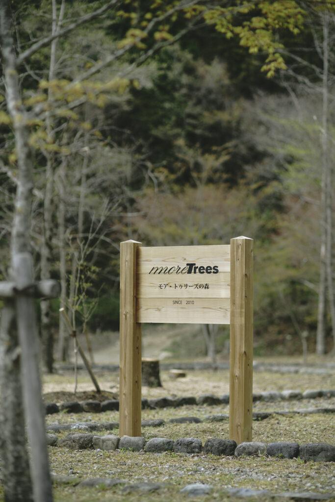 音楽家・坂本龍一が代表を務める森林保全団体「more trees」。国内外18ヶ所に地域と協働で森林保全を行う「more treesの森」を展開するなど、「都市と森をつなぐ」をキーワードにさまざまな取り組みを行っている。