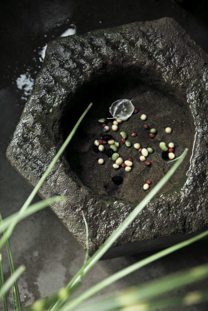 揺れる水に豆を沈め「後の月」。