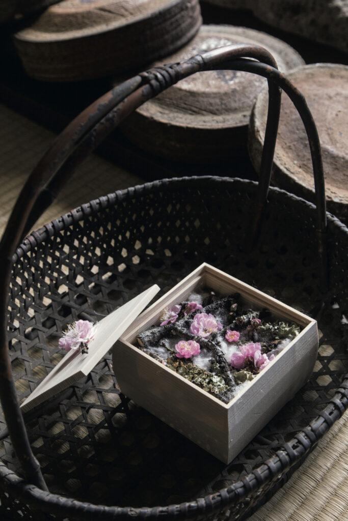 木箱の梅が告げる「立春」。