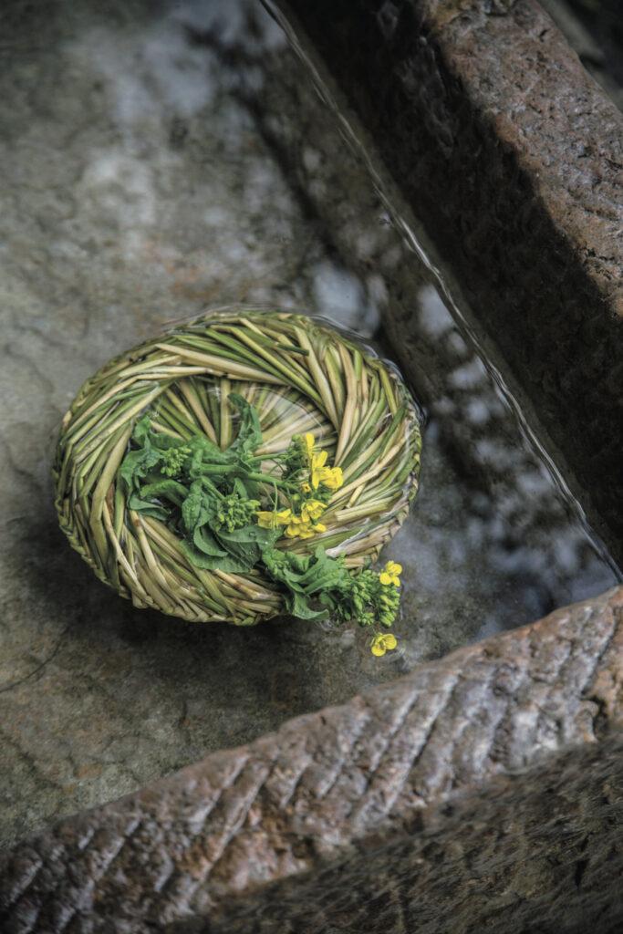 可憐な菜の花で「雛祭り」。