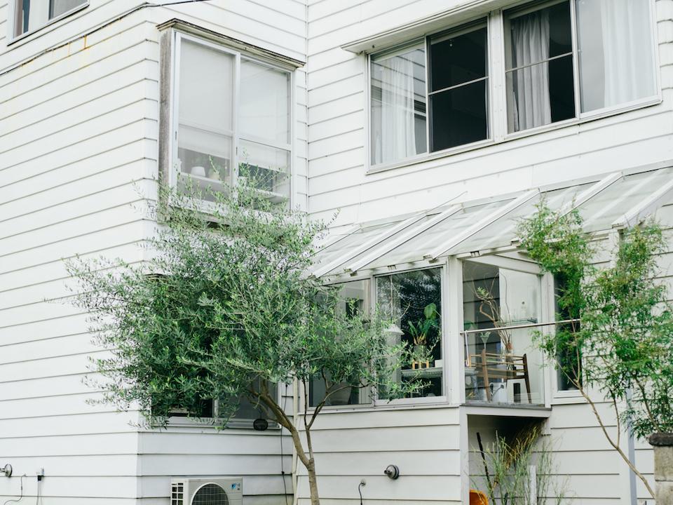 1970年代後半に建築家によって建てられた一軒家。サンルームも自ら補修。窓のすぐそばにオリーブの木を植え、周囲からの目隠しに。